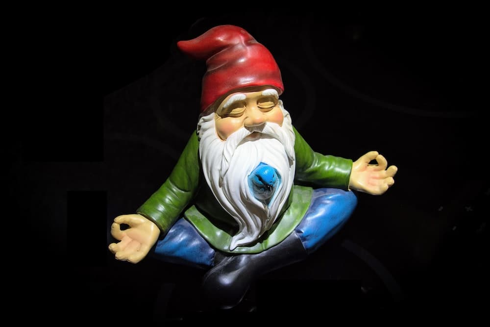 I wonder if any Gnomes teach Blogging Courses